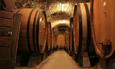 Vini di Puglia